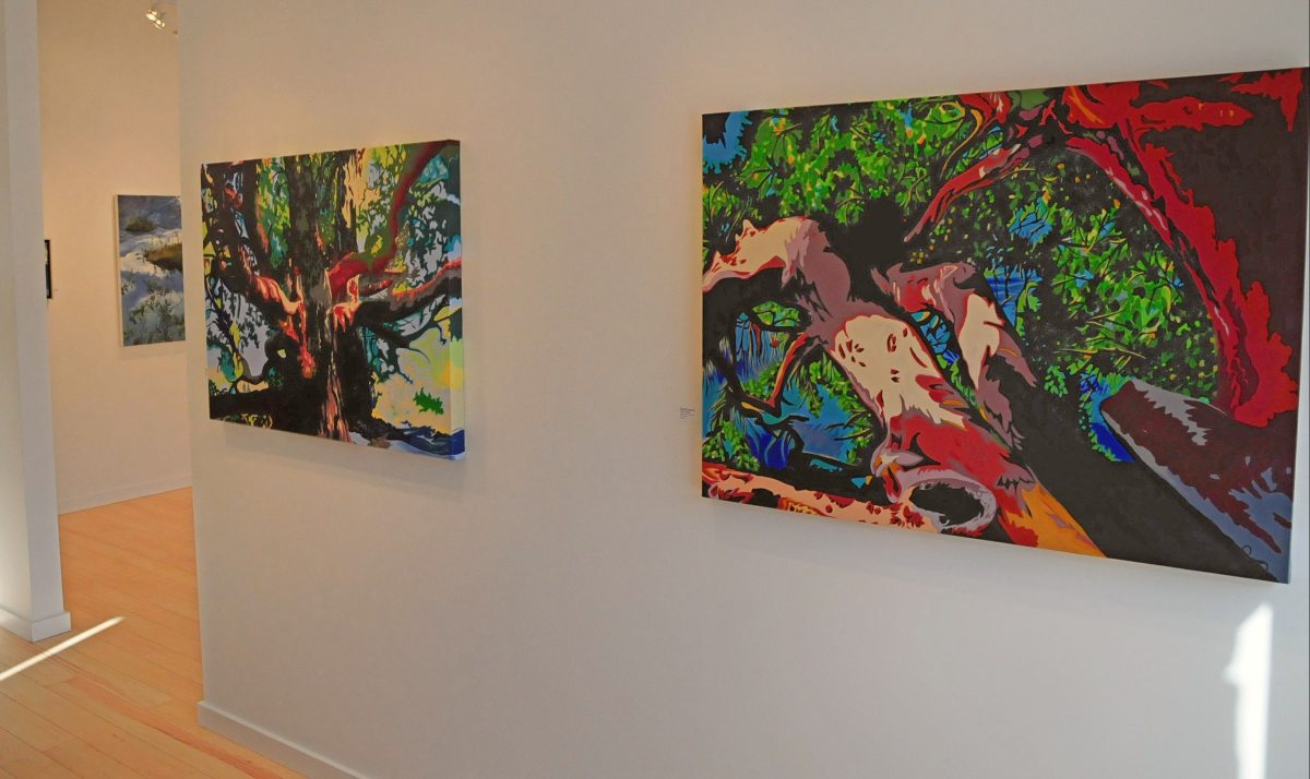 Brandy Saturley at Edge Gallery Canmore Alberta