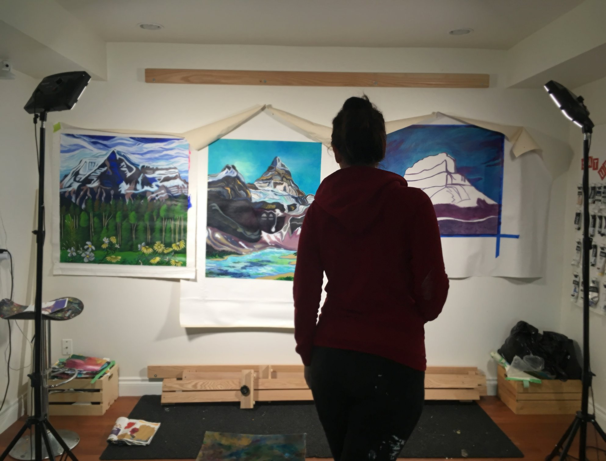 mountain forms collective - paintings in progress - canadian artist